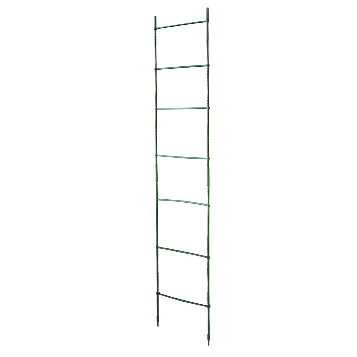 18320 Pea Bean Ladder Kit