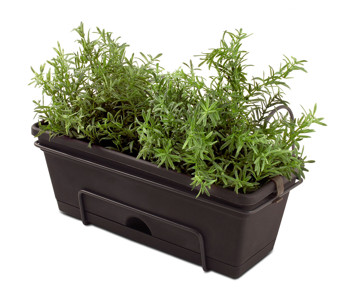 18420 Herb Planter Charcoal with herbs