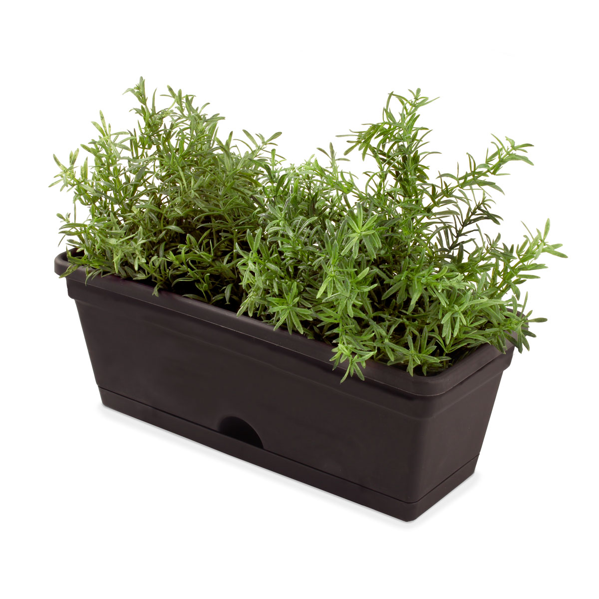 18440 Garden Up Herb Pot Charcoal with herbs