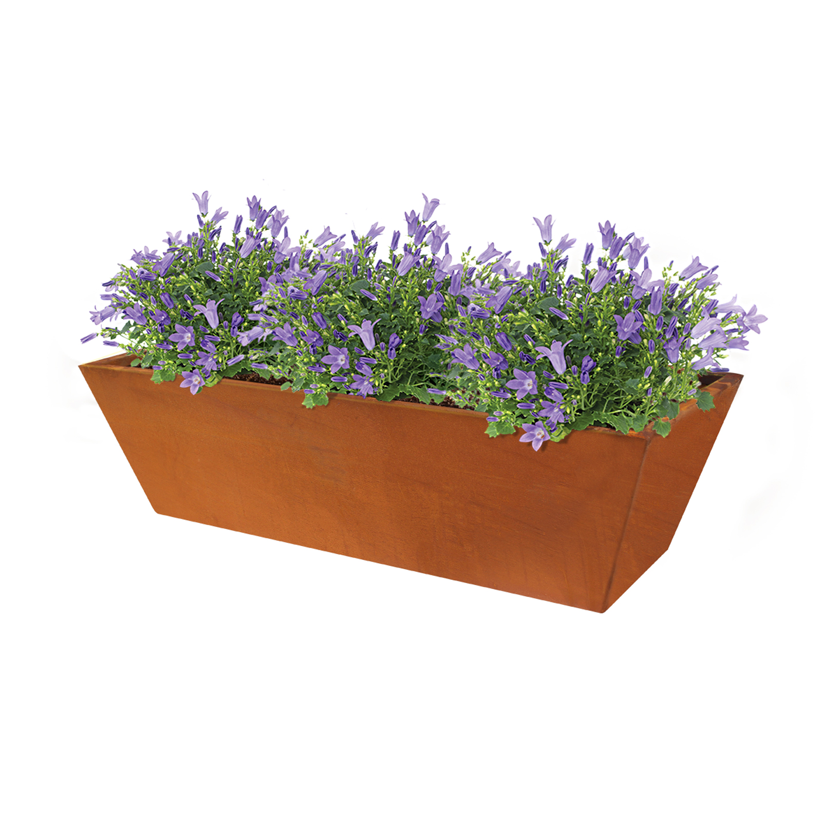 18478 casa planter with plants 800x345x230