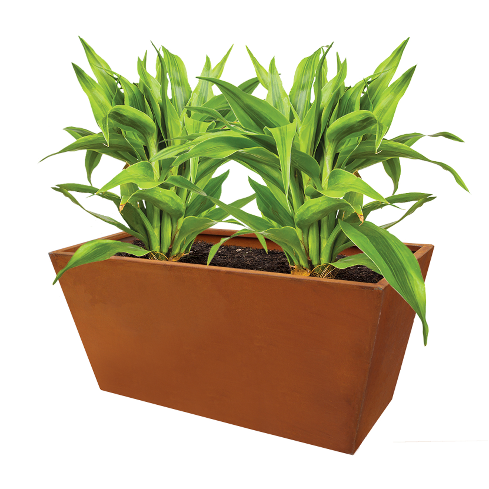 18479 casa planter with plants 870x410x405