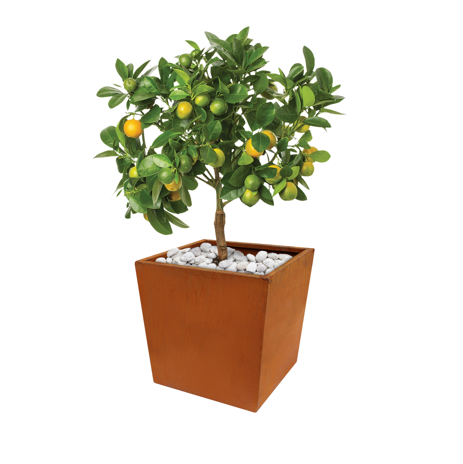 18480 casa planter with plants 410x410x405