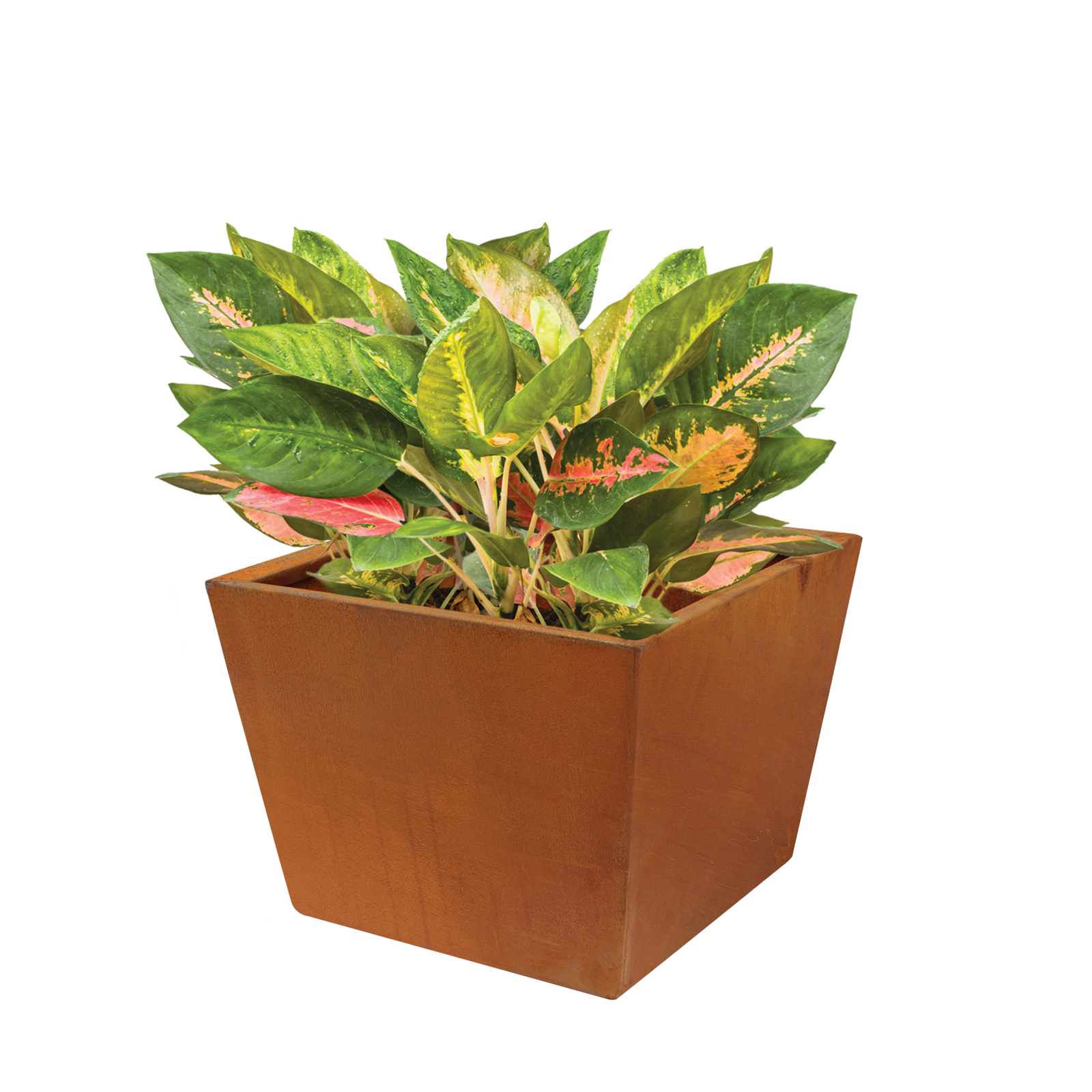 18481 casa planter with plants 346x346x260