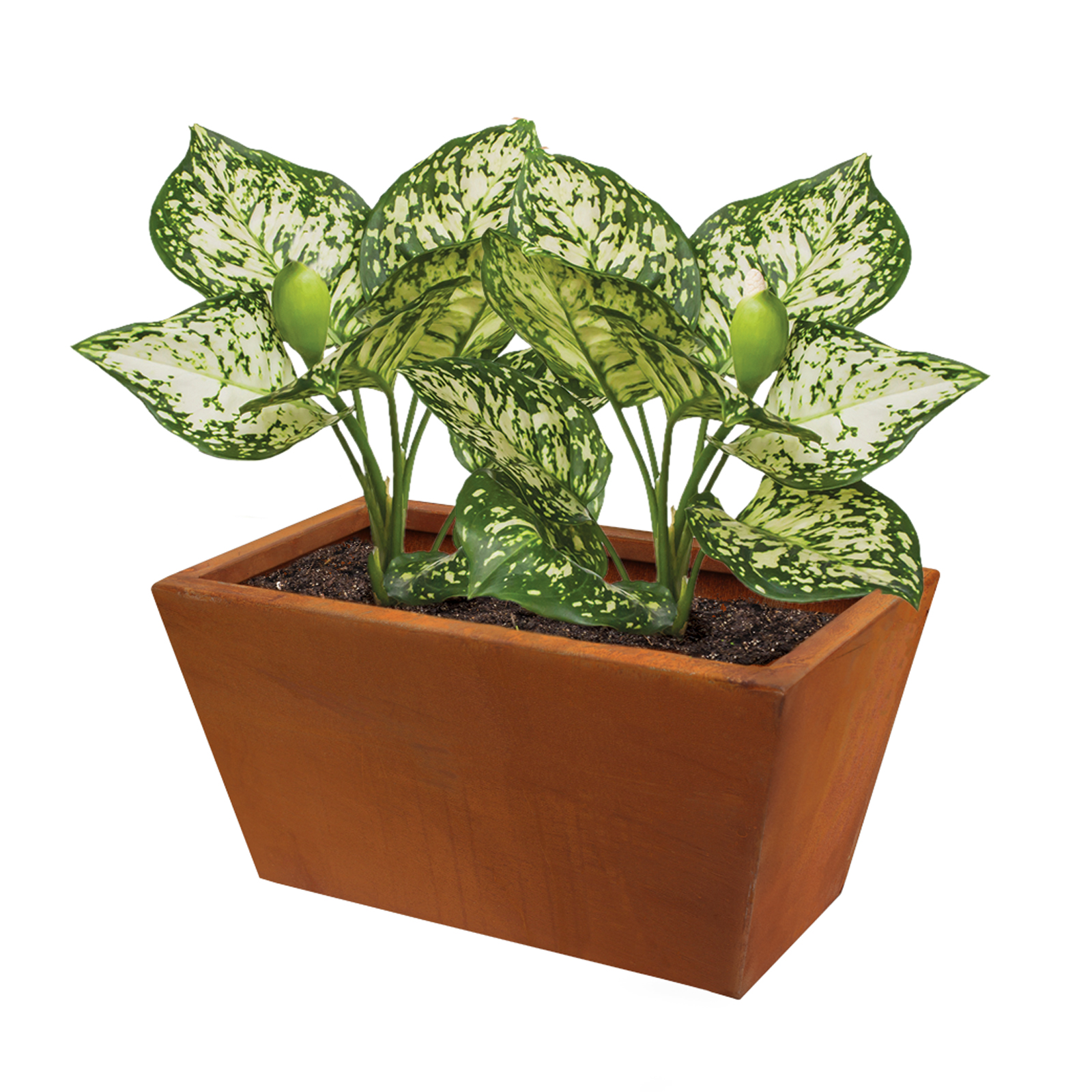 18482 copa planter with plants 400x230x200