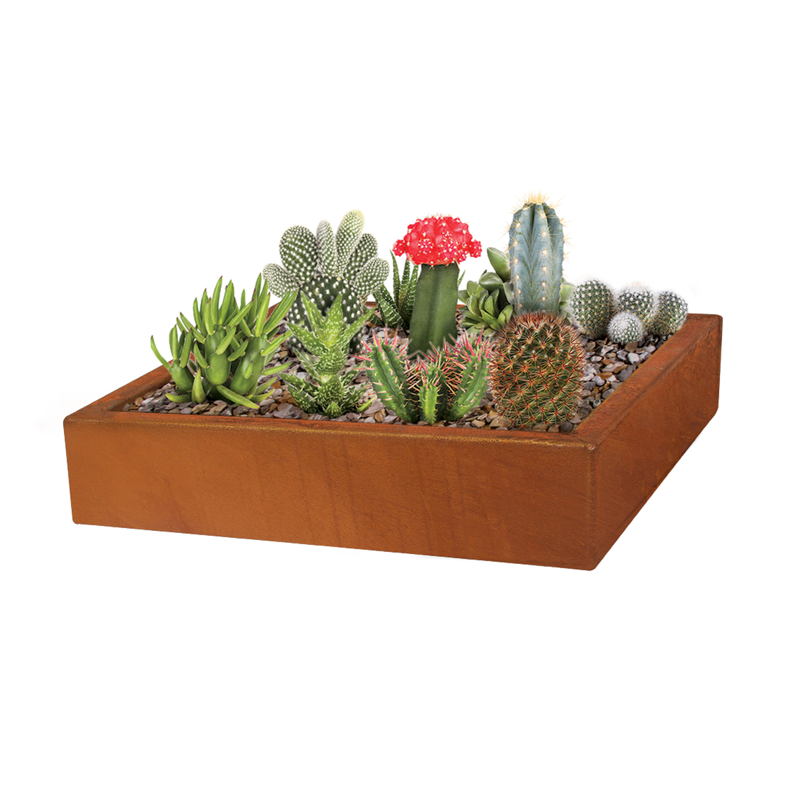 18485 copa planter with plants 350x350x76