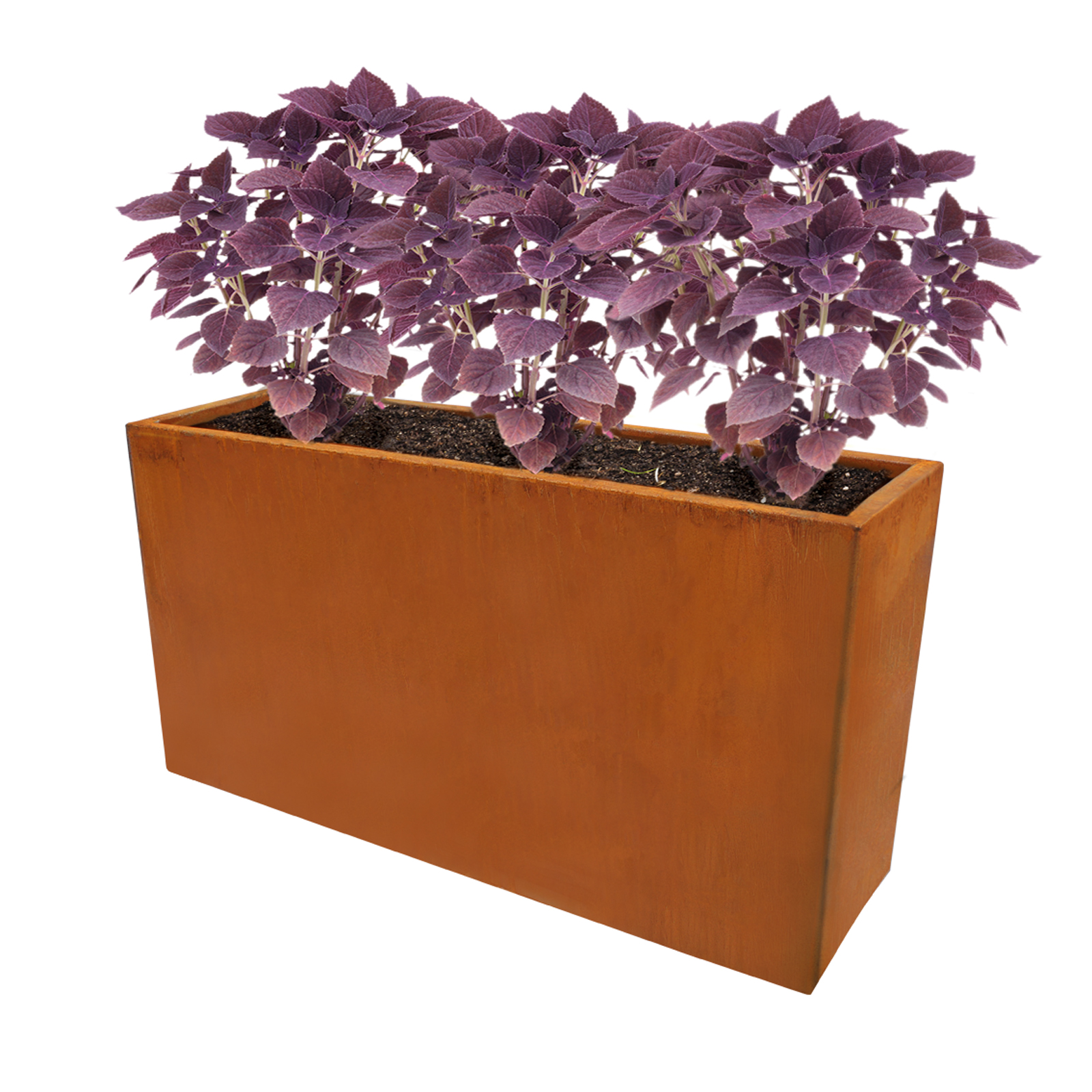18489 cafe planter with plants 750x230x400