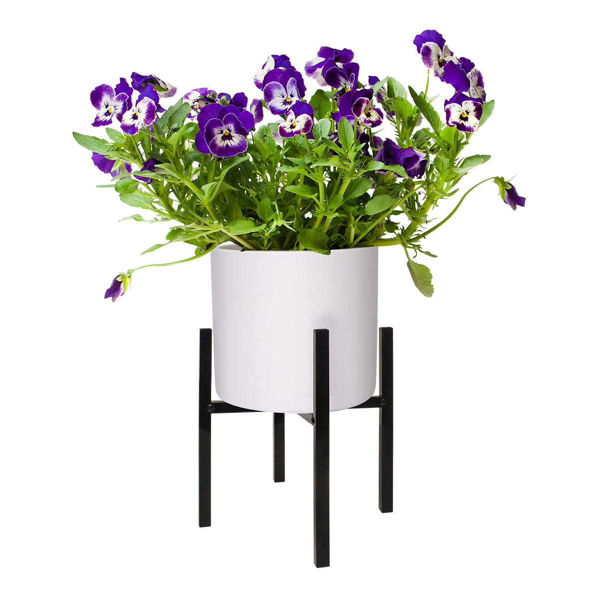 18512 Richmond Plant Stand Black 240x250mm