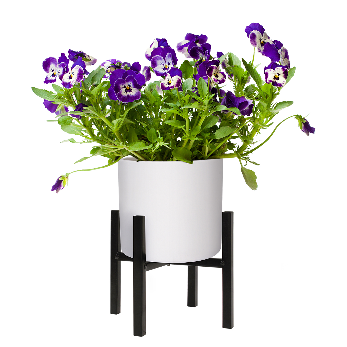 18516 Richmond Plant Stand Black 190x160mm