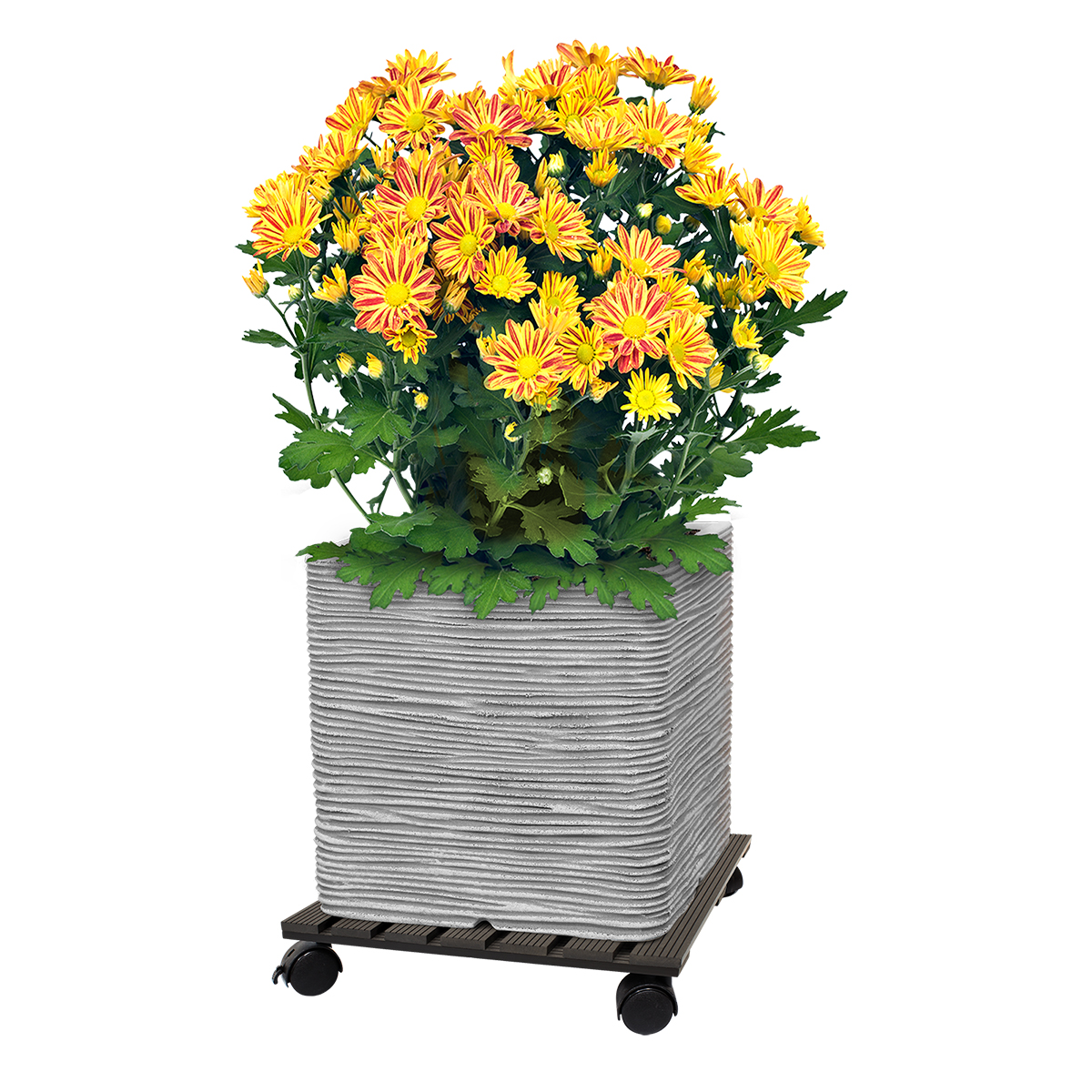 18525 Wood-Poly Pot Trolley Square with pot