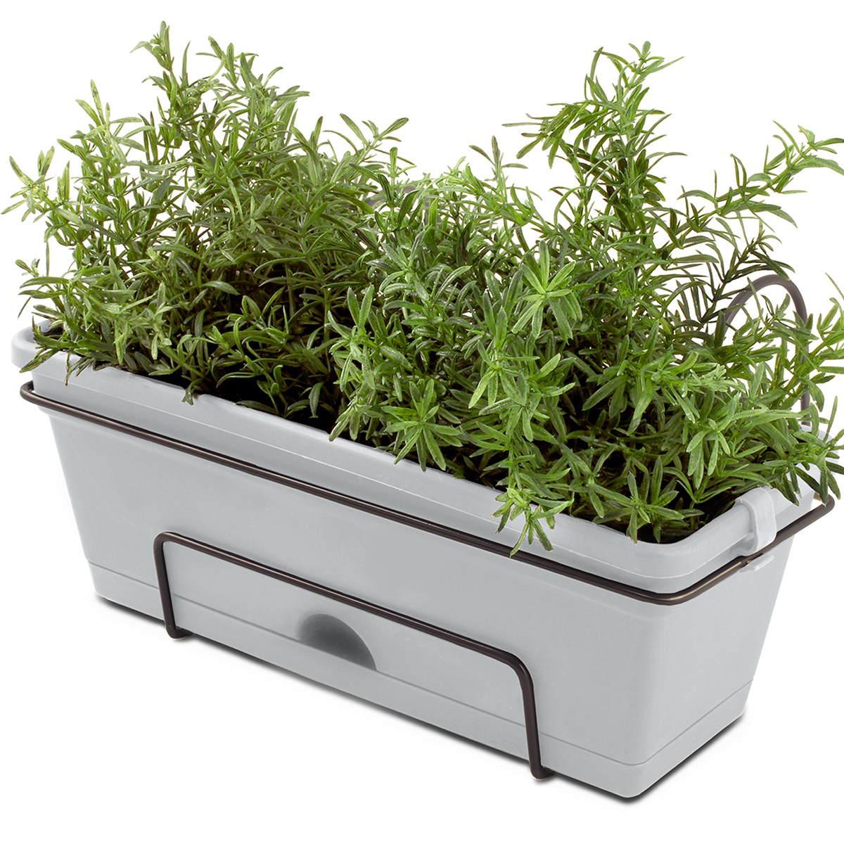 18691 - Herb Planter with herbs Concrete Grey