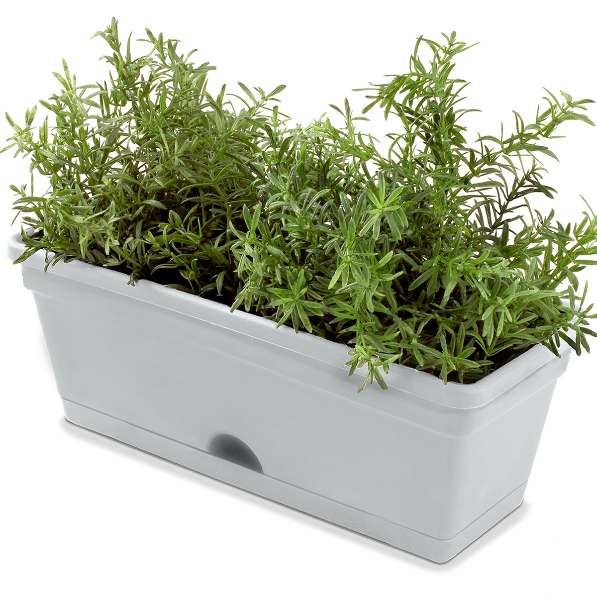 18694 - Herb Pot with herbs Concrete Grey
