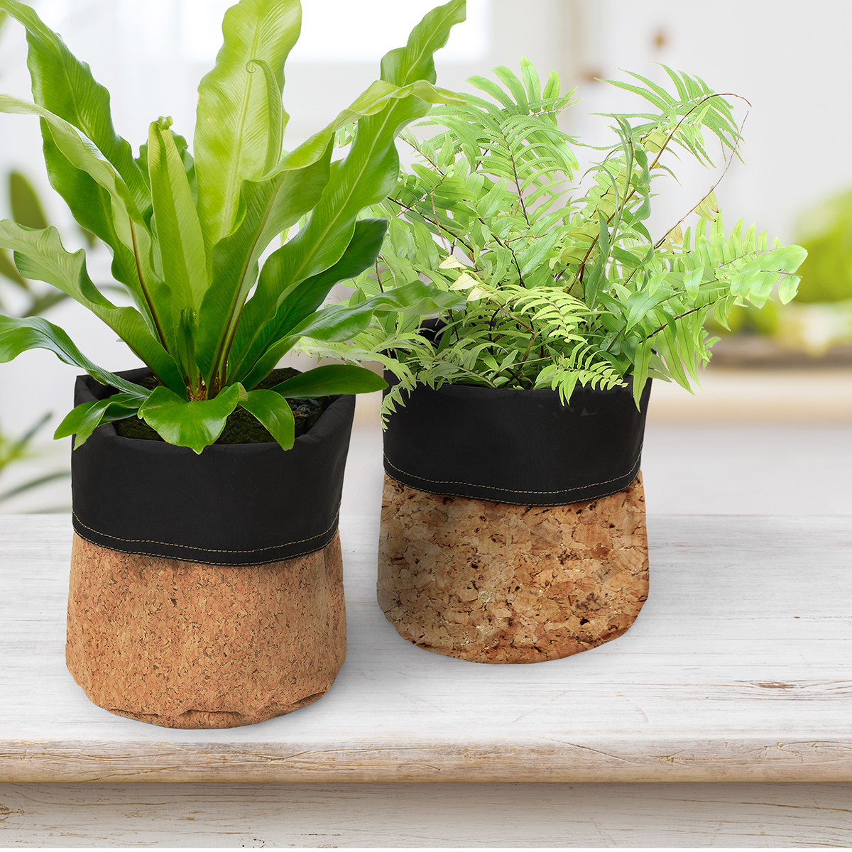 Natural and Gold Fleck Cork Planters