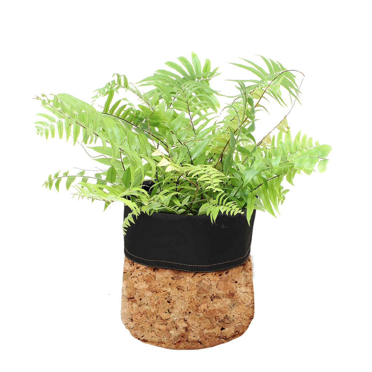 18828 Cork Planter Gold Fleck with plant