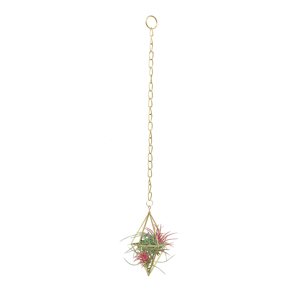 18901 Diamond Hanging Planter with tillandsia