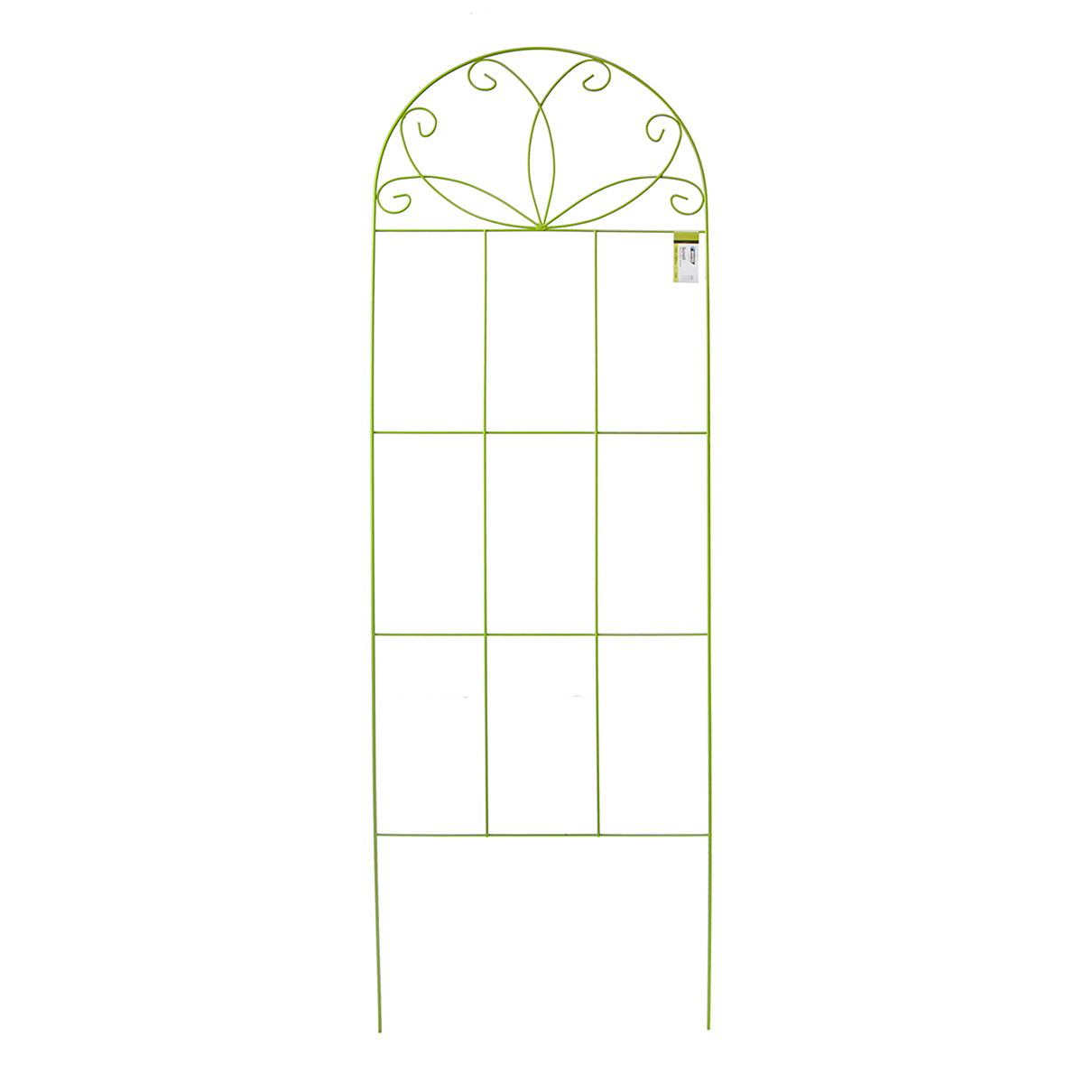 18373 - Scroll Decorative Trainer 1600 x 500mm - Lime