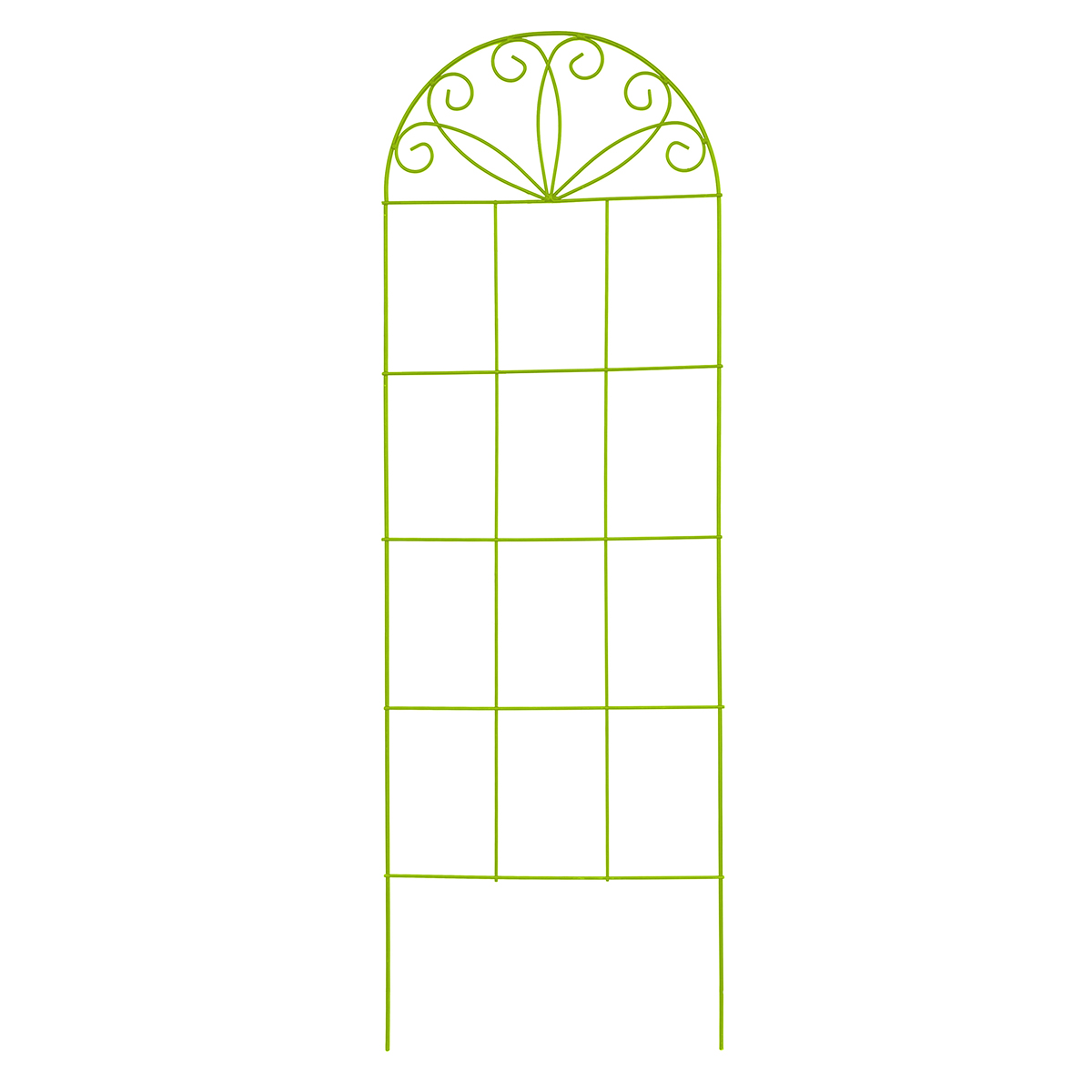 18551 - Scroll Decorative Trainer 1800 x 500mm Lime